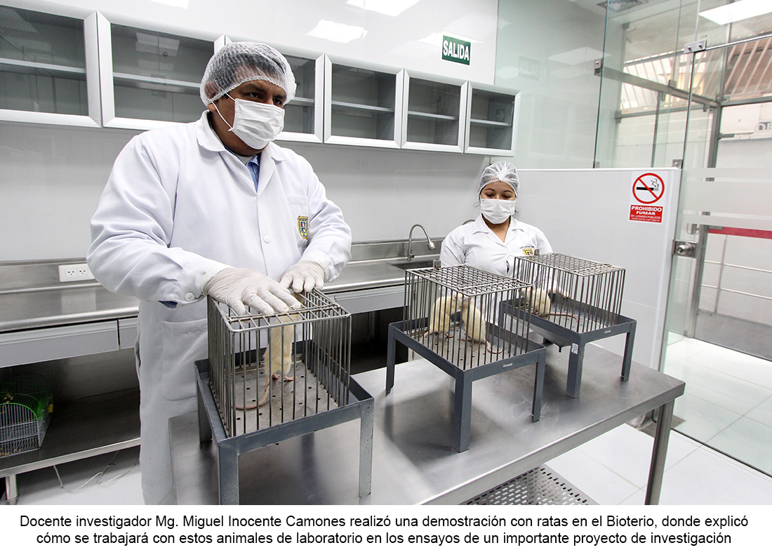 2019-05-09_laboratorios12
